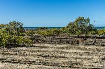 JuliePowell_Hervey Bay-54