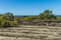 JuliePowell_Hervey Bay-54