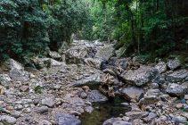 JuliePowell_Natural Bridge-15