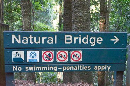 JuliePowell_Natural Bridge-2