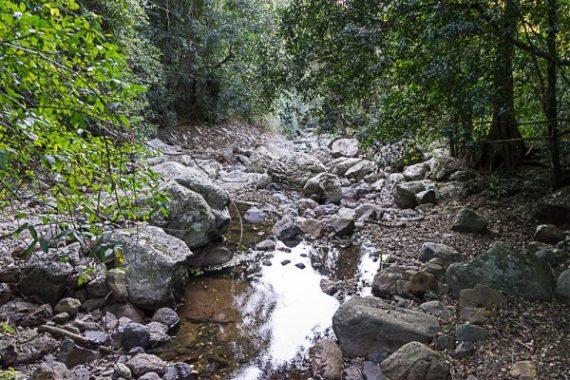 JuliePowell_Natural Bridge-6