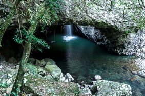 JuliePowell_Natural Bridge-9