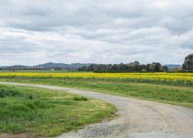 JuliePowell_Aust Gardens-129
