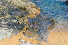 Julie Powell_Kilcunda Beach-10