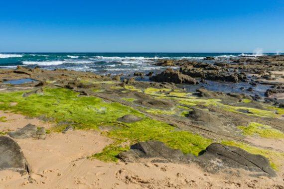 Julie Powell_Kilcunda Beach-9