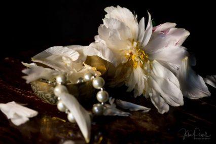 Julie Powell_Peonies Dark-21