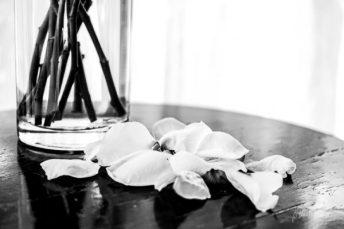 Julie Powell_Roses-3