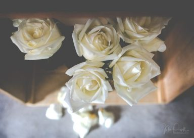 Julie Powell_Roses-7
