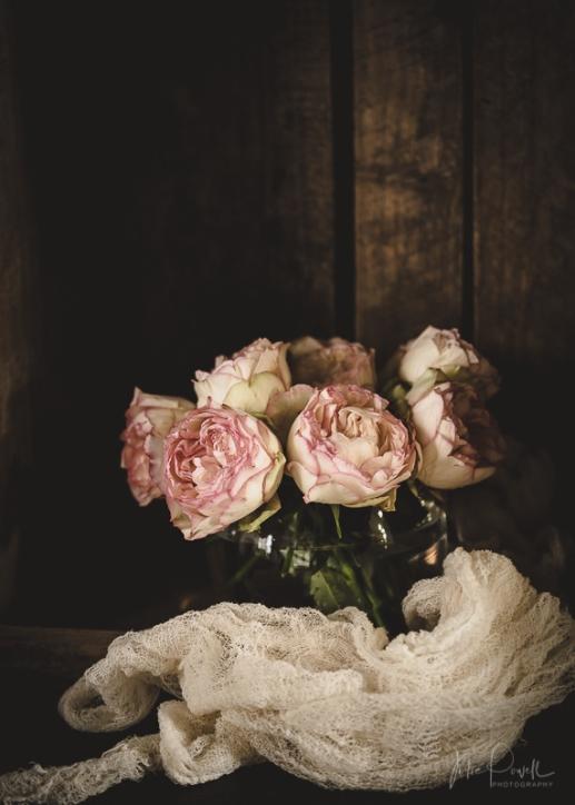 Julie Powell_Peony