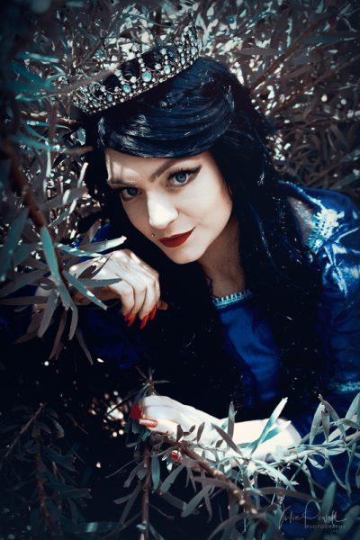 Julie Powell_Warratah Princess-4