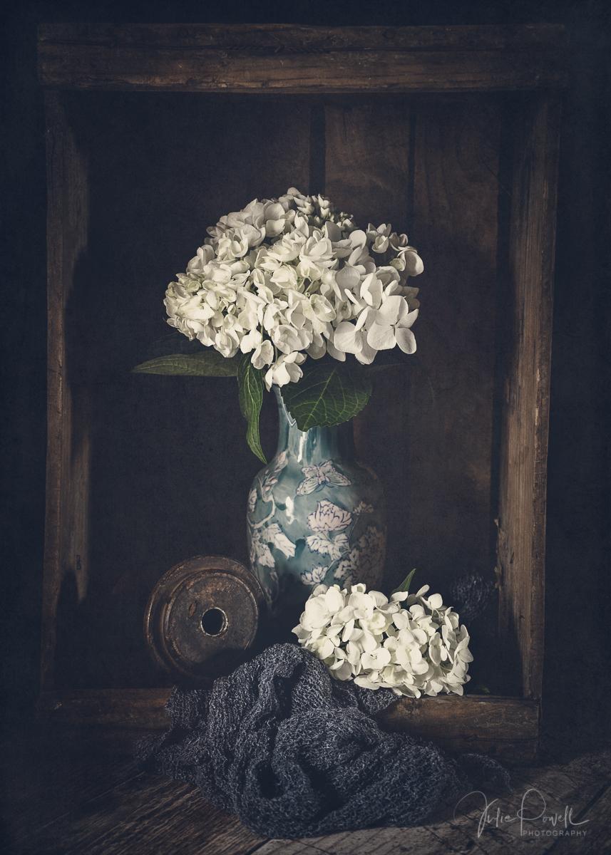 Julie Powell_Hydrangea-4