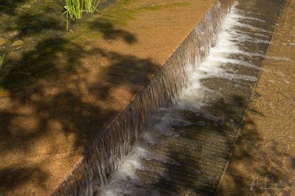 juliepowell_aust gardens-65