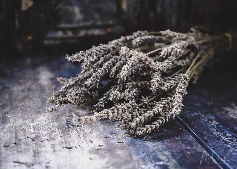 juliepowell_lavender-10