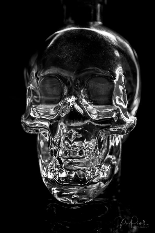 juliepowell_skull-2