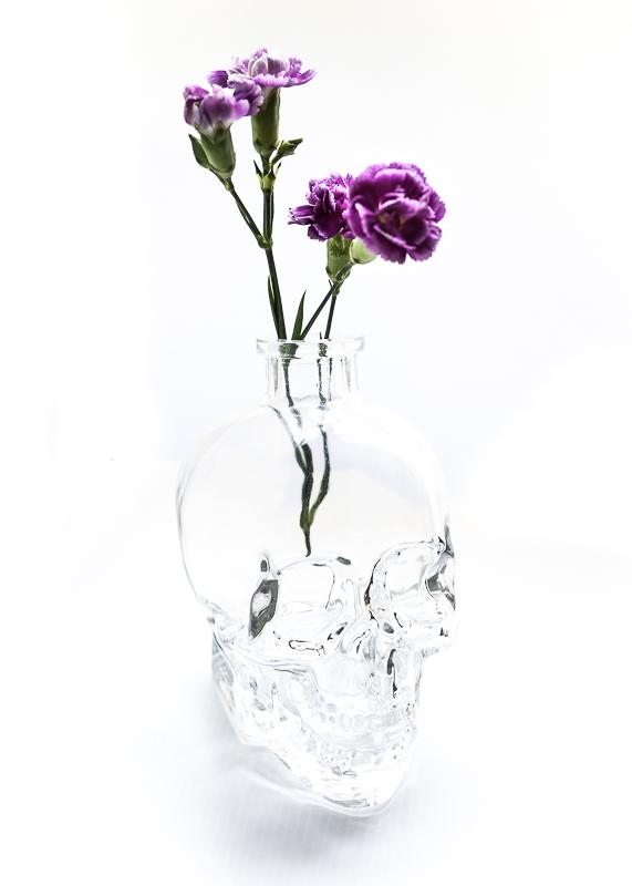 juliepowell_skull-4