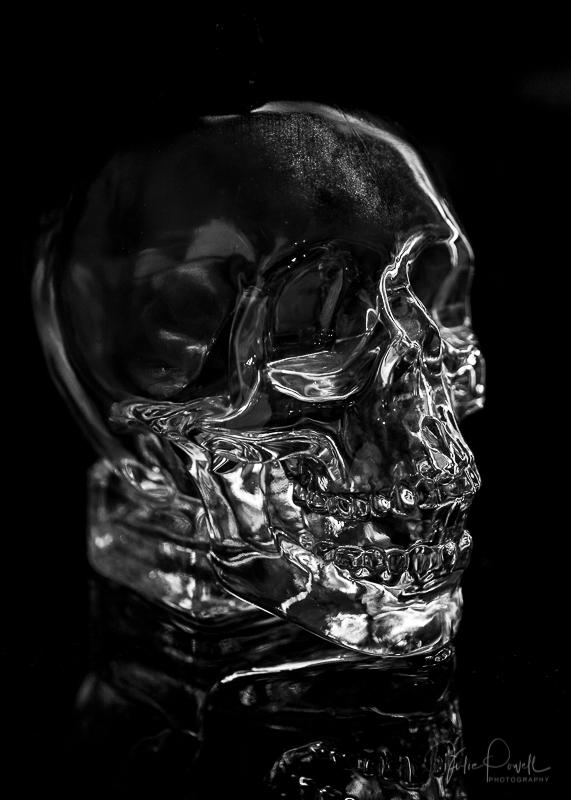 juliepowell_skull