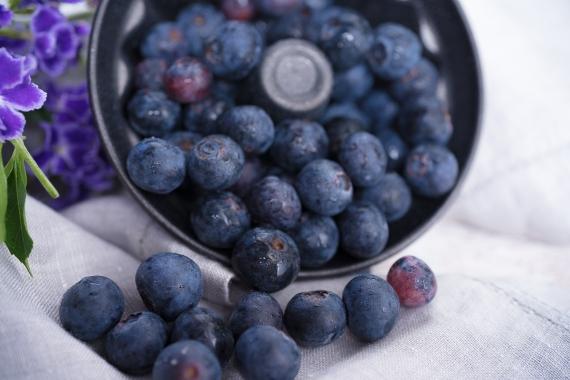 Julie Powell_BlueBerries-2