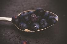Julie Powell_BlueBerries-7