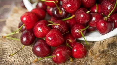 JuliePowell_Cherries-10