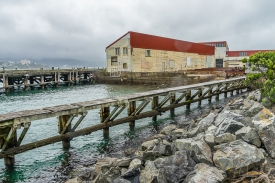 JuliePowell_Cape Halswell-5