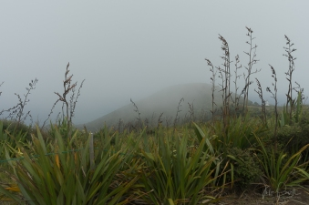 JuliePowell_Cape Reinga Lighthouse-2