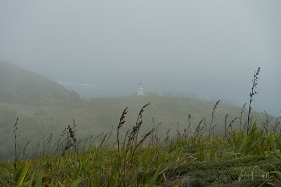 JuliePowell_Cape Reinga Lighthouse-5
