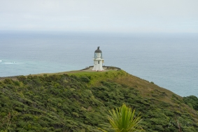 JuliePowell_Cape Reinga Lighthouse-9