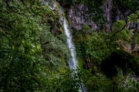 JuliePowell_Dawson Falls-3