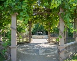 JuliePowell_Hamilton Gardens-36