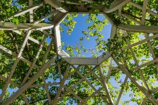JuliePowell_Hamilton Gardens-8
