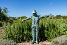 JuliePowell_Hamilton Gardens-84