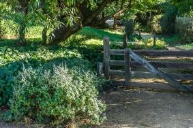 JuliePowell_Hobbiton-5