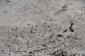 JuliePowell_Mud Pools-3