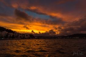 JuliePowell_Oriental Bay-4