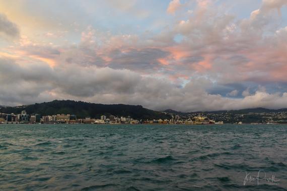 JuliePowell_Oriental Bay