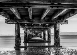 JuliePowell_Petone Wharf-5