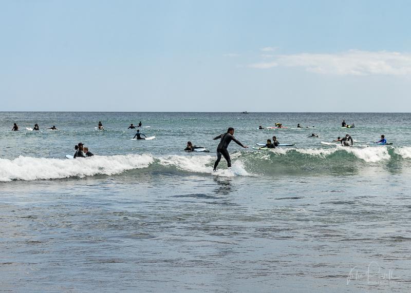 Piha Beach - Surf School