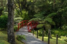 JuliePowell_Rapaura Watergardens-17