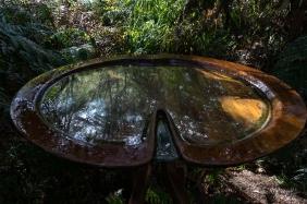 JuliePowell_Rapaura Watergardens-18