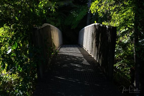 JuliePowell_Rapaura Watergardens-24