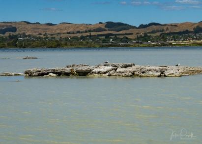 JuliePowell_Rotorua Sulphur Lake-2