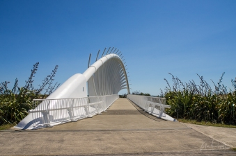 JuliePowell_Te Rewa Rewa Bridge_Plymouth-2