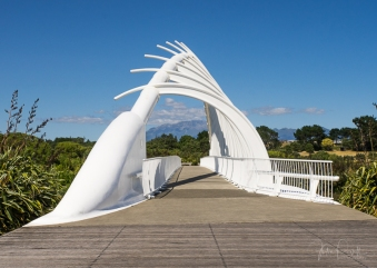 JuliePowell_Te Rewa Rewa Bridge_Plymouth-4