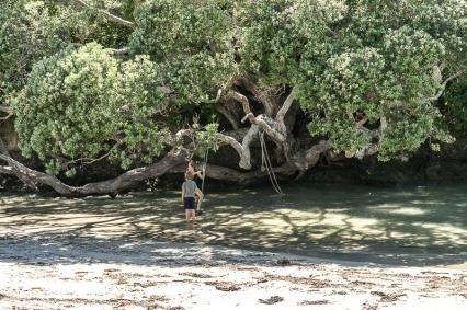 JuliePowell_Waipy Cove