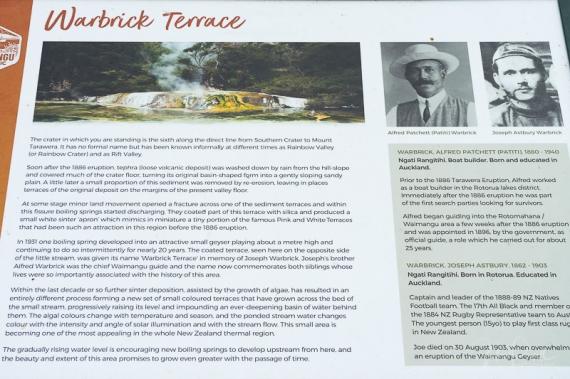 JuliePowell_Warbrick Terrace-7