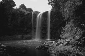 JuliePowell_Whangerei Falls-13