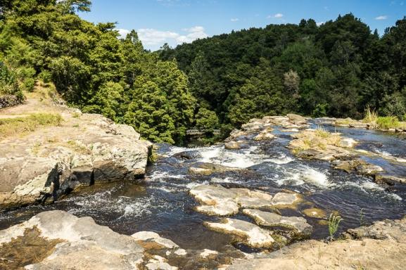 JuliePowell_Whangerei Falls-2
