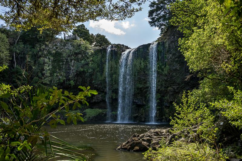 JuliePowell_Whangerei Falls-7