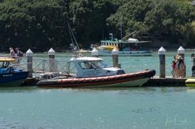 JuliePowell_Whitianga Wharf-5