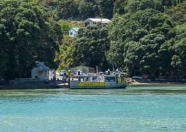 JuliePowell_Whitianga Wharf-9